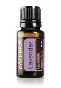 lavender-essential-oils-for-dogs