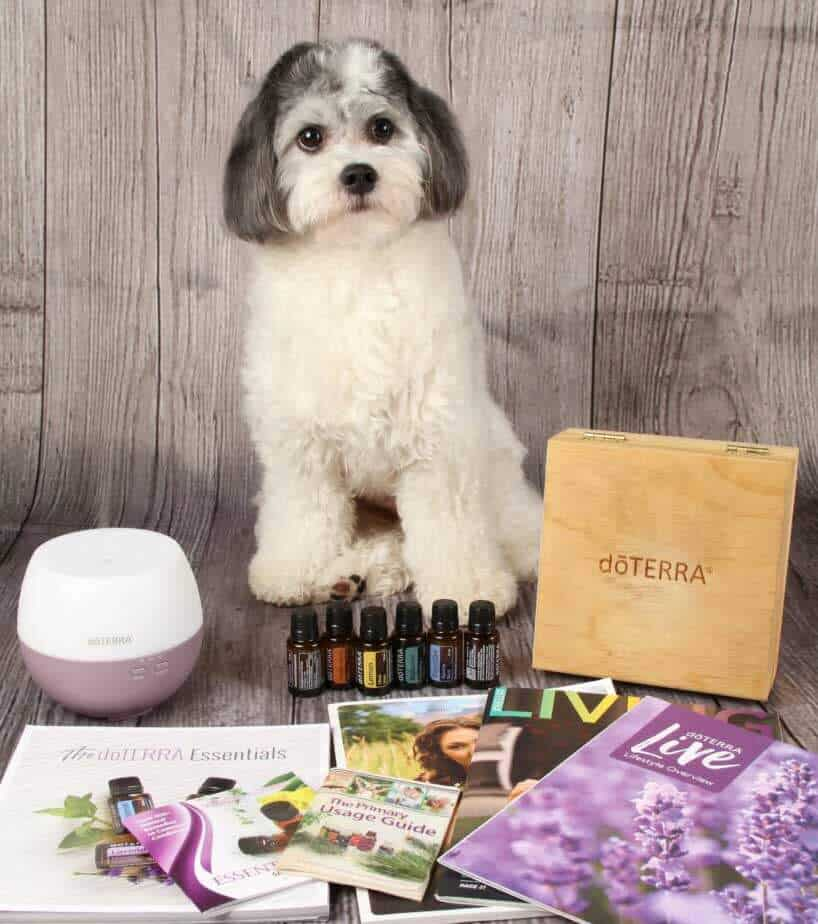 shop-doterra-essentials-oils-for-pets-blog