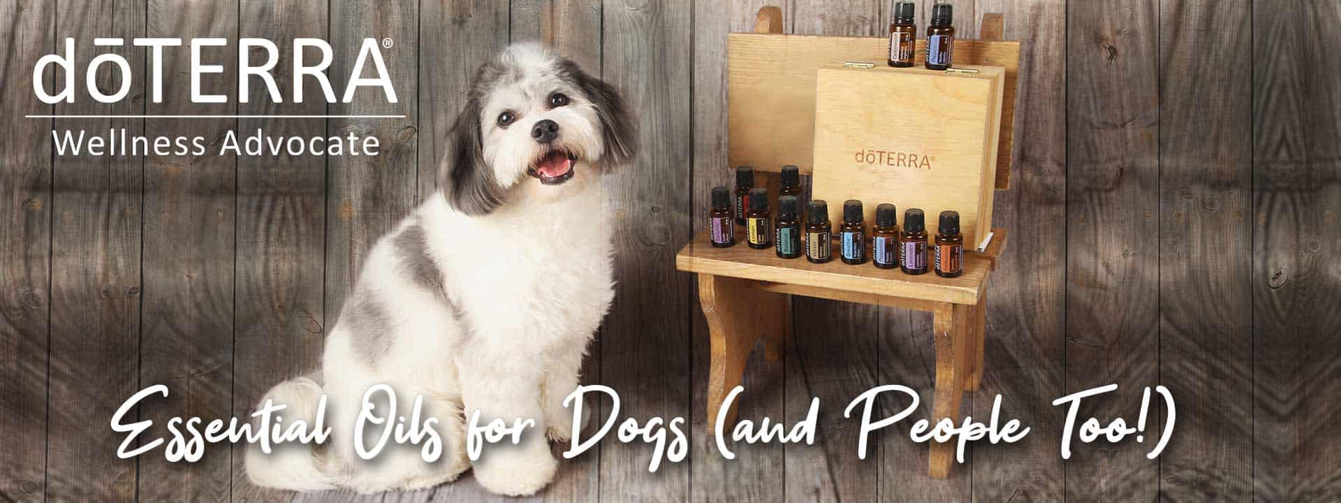 shop-essential-oils-for-pets