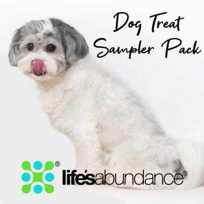 dog-treat-sampler-pack-that-doggy-chi-shop
